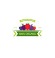 organic food emblem and badge vector image vector image