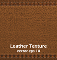 lather texture 2 vector image
