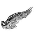 black wing vector image vector image
