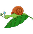 cartoon funny snail on a leaf vector image vector image