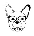 hipster french bulldog icon image vector image