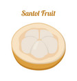 santol krathon - exotic fruit cartoon flat style vector image vector image