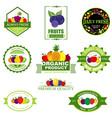 set fruit and vegetables logo vector image