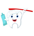 cute cartoon tooth cleaning himself with a brush a vector image