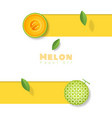 fresh melon fruit background in paper art style vector image vector image