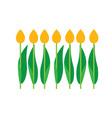 set of tulips bouquet vector image