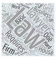 Business laws basics Word Cloud Concept vector image vector image