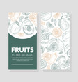 layout flyers for sale fruit vector image vector image