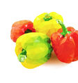 red and yellow pepper vector image vector image