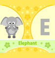 the english alphabet with elephant vector image vector image