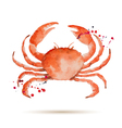 Watercolor crab vector image vector image