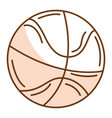 basketball balloon isolated icon vector image