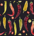 hot chili pepper pattern vector image vector image
