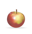 realistic apple vector image vector image