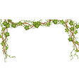 tropical jungle lianas branches decorative banner vector image vector image