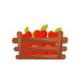 wooden box full of ripe red apples fresh and vector image