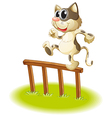 A cat crossing the fence vector image