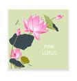 Blooming lotus vector image