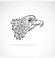 eagle head on white background bird wild vector image vector image