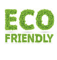 Eco friendly word made of green leafs vector image vector image