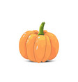isolated color pumpkin on a white background vector image