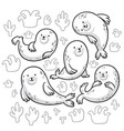 seal animals characters in outline cartoon vector image