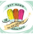 set Fruit Ice with price Popsicle on a white vector image