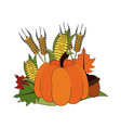 thanksgiving related icon image vector image