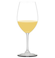 White wine glass vector image vector image