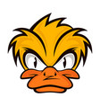 cartoon evil face duck on the grey background vector image vector image