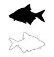 common bream silhouette vector image