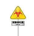 ebola virus vector image vector image