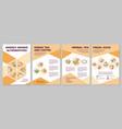energy drinks alternatives brochure template vector image