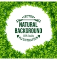 Natural frame of fresh green spring leaves vector image vector image