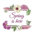 spring flower background spring is here logo in vector image