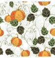 colored pumkin on white vector image vector image