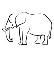 elephant sketch on white background vector image vector image