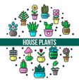 house plants and flowers indoor greenery in pots vector image vector image