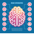 Left and right human brain vector image vector image