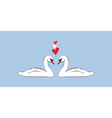 loving couple swans vector image