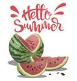 piece watermelon with inscription hello vector image vector image