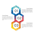 Low poly abstract hexagon infographic elements vector image