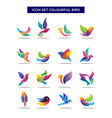 Abstract geometric birds icon set exotic colorful