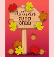 autumn sale banner paper colorful tree leaf maple vector image vector image