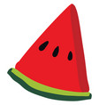 flat watermelon on white background vector image vector image