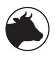 head cow vector image vector image