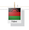 photo of malawi flag vector image vector image