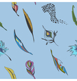 Background with feathers vector image