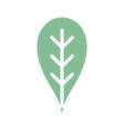 Botany leaf to ecology care symbol vector image