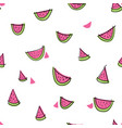 seamless hand drawn watermelon pattern white vector image vector image